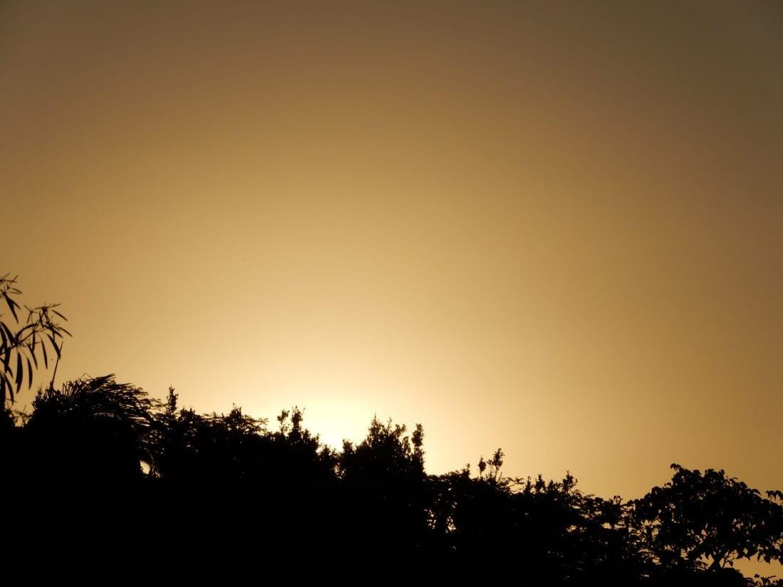 Golden Light - Infinite Truth of You